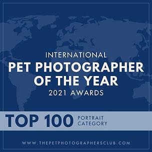 pet award.jpg