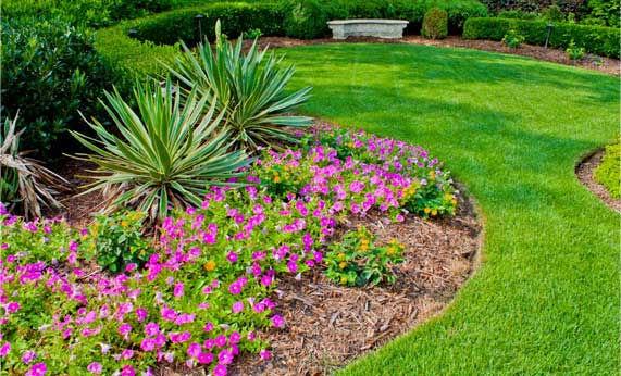 Landscape / Flower bed Mulching