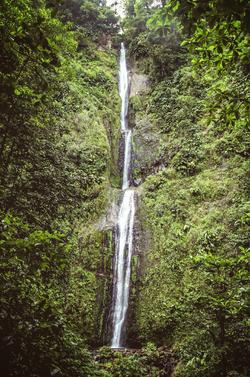 Les chutes Moreau
