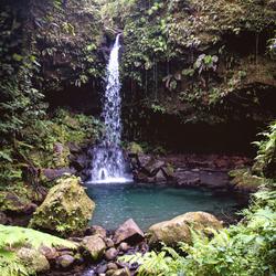 Emerald Pool, Dominique
