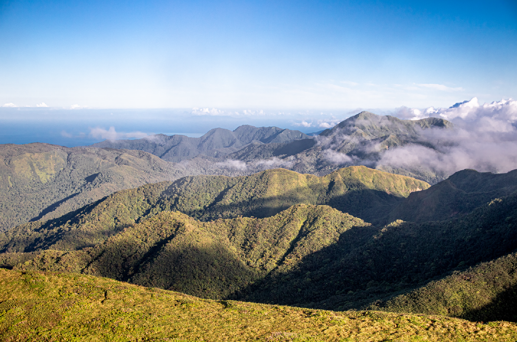 Vue du flan de la Soufrière. Guadeloupe