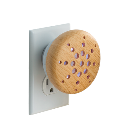 essential oil pluggable diffuser