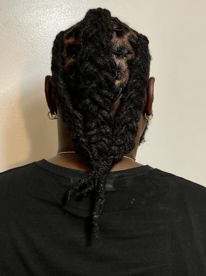 men braids 6.JPG