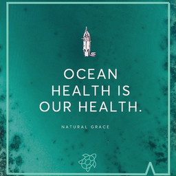 Happy World Oceans Day 🌊 Some Facts about Our Oceans... - - Oceans produce around 70% of the oxygen we breath - - More than 80% of oceans are unexplored - - Over 70% of the Earth's surface is covered by water - - Over 8 million pieces of plastic enter our oceans everyday. - - Our oceans and their inhabitants are under threat 🐢 We need to act.