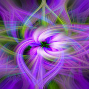 Petunia Twirl