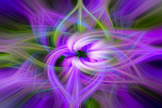 Petunia Twirl.jpg
