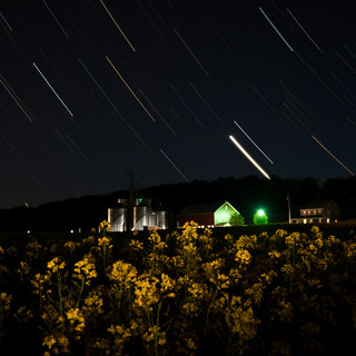 Star Trails Over the Canola Fields