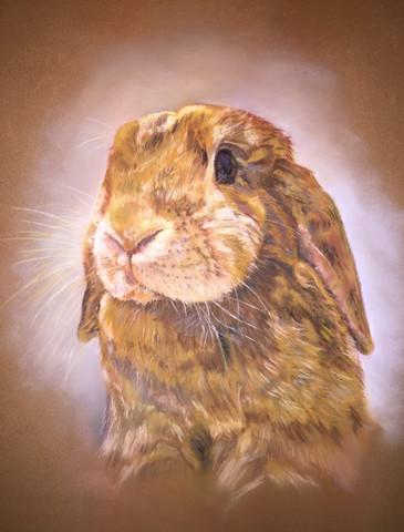 Jane High - Rabbit 1 .jpg