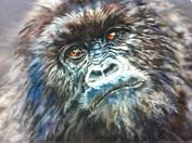Jane High - Gorilla 3.jpg