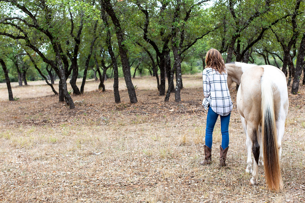 The-Willing-Equine-2019-94.jpg