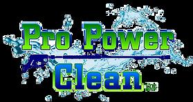 Pro Power Clean logo