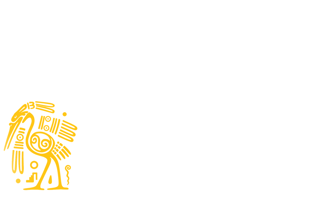 11117 (1).png