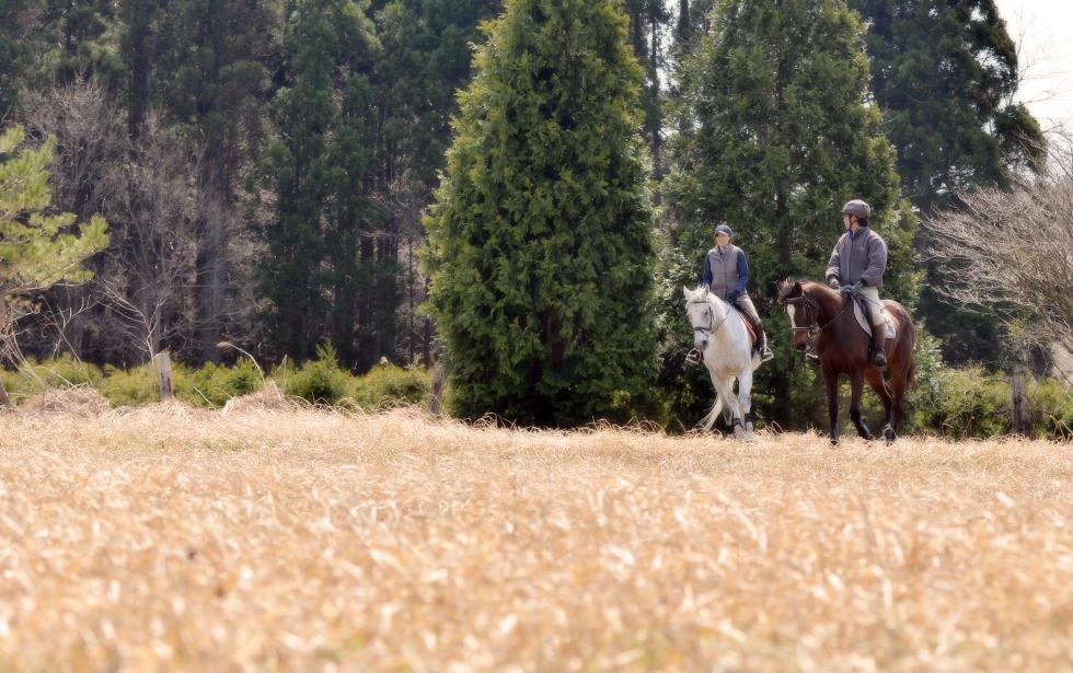 イメージ写真撮影「あきた乗馬クラブ」