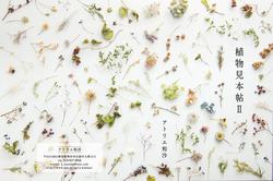 植物見本帳Ⅱ「アトリエ和沙」様