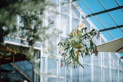 WEBサイト用&販促用撮影「秋田植物園」様