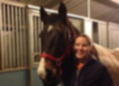 horseback riding lessons, stuarts draft, virginia