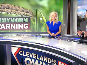 Fox 8 News Talks to Landscaping Experts at Brian-Kyles About Armyworms in Ohio