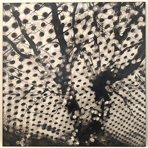 Jun Hoshino | Untitled-2