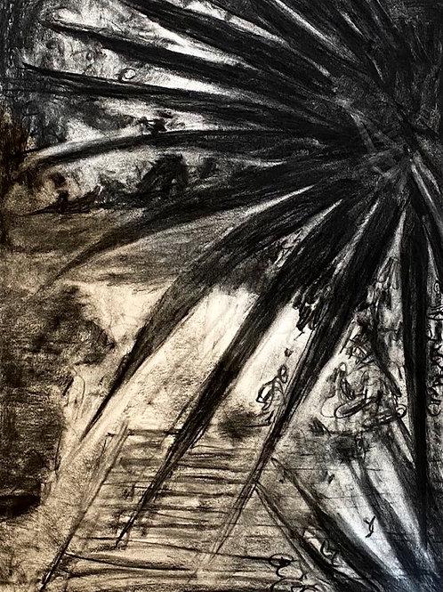 Sara Egan | (reading Josef Albers in Mexico) drawing #3