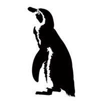 サンチームペンギン大