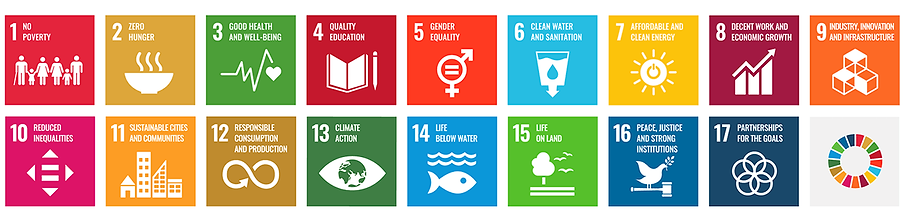 SDG_icons_top_4.png