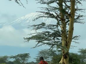 L'ascension du mont Kilimanjaro (1/3)