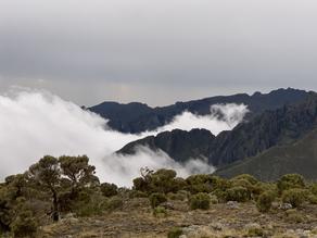 L'ascension du mont Kilimanjaro (2/3)