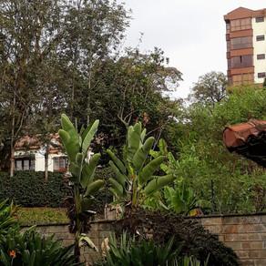 Arrivée à Nairobi