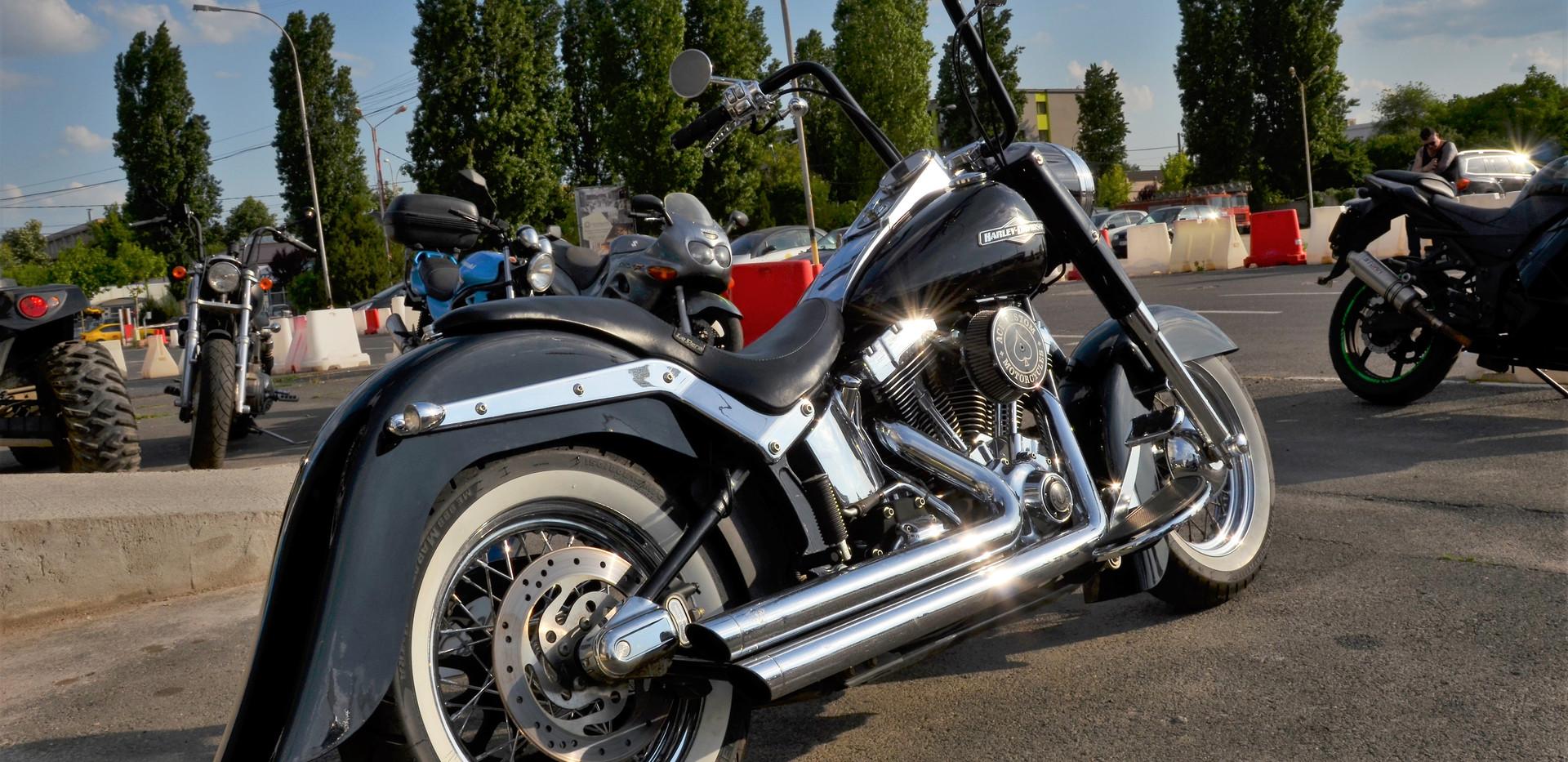 Harley Davidson Softail Heritage Gangsta 3