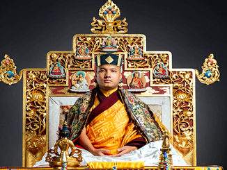 Mensagem do 17º Gyalwang Karmapa no seu trigésimo sexto aniversário.