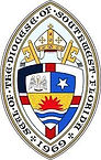 Diocese Logo SW.jpg