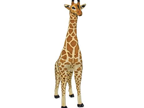 M&D Giant Giraffe