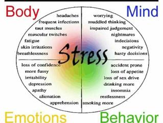 ¿Cómo nos afectan las emociones negativas?