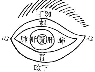 Los ojos y el estado de salud
