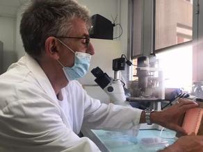Un test sérologique facile d'usage à seulement 0,3 centimes d'euros créé à Toulouse
