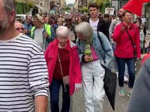 Manifestation contre le passe sanitaire du 31 juillet 2021 (3ème partie)