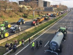 Des agriculteurs en colère à Toulouse pour une juste rémunération et une modification de la PAC 2023