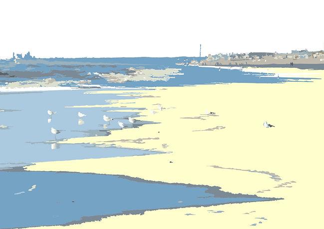 Noordwijk strand zeemeeuw def 2 juli.jpg