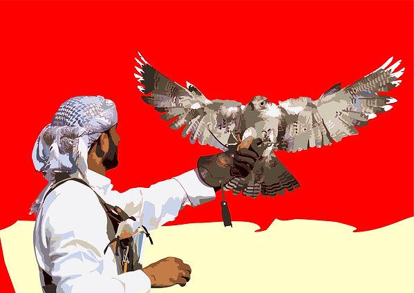 Falcon gespreid rood 2 mei.jpg