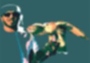Falcon Grijsblauw 28 juni 2020.jpg