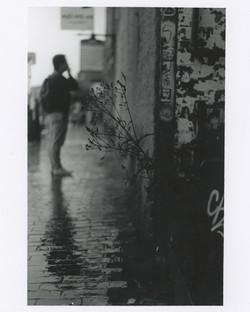 35mm 3.jpg