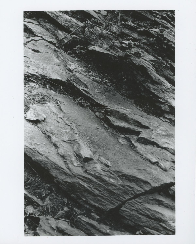 35mm 2.jpg