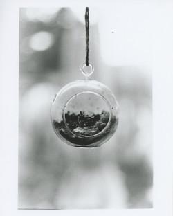 35mm 4.jpg