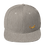 Thumbnail: Bearded Dragon Snapback