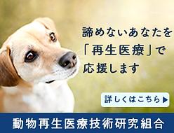 gikunmi_banner_2_fin_w300h230.png