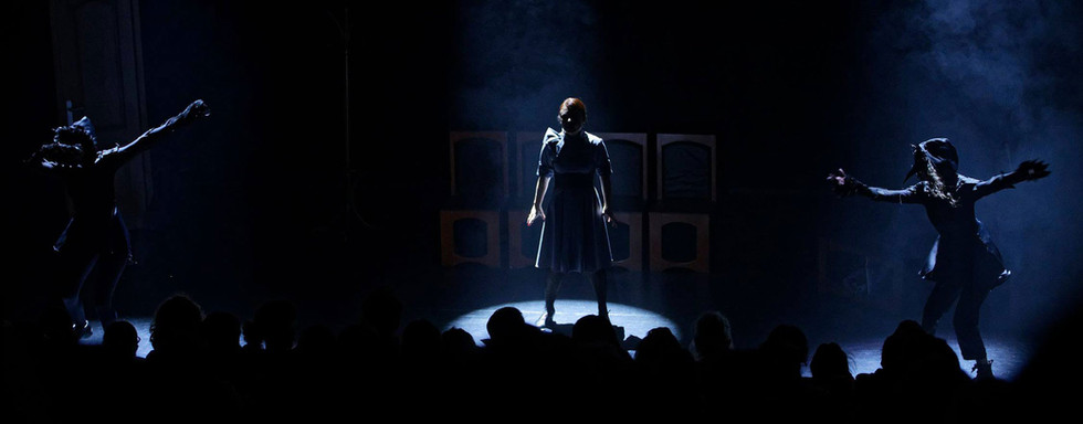 spectacle-les-roses-explosent-compagnie-