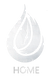 Logo Silver 25% Alone Home.png