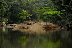 CAMEROON 012