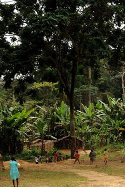 CAMEROON 046