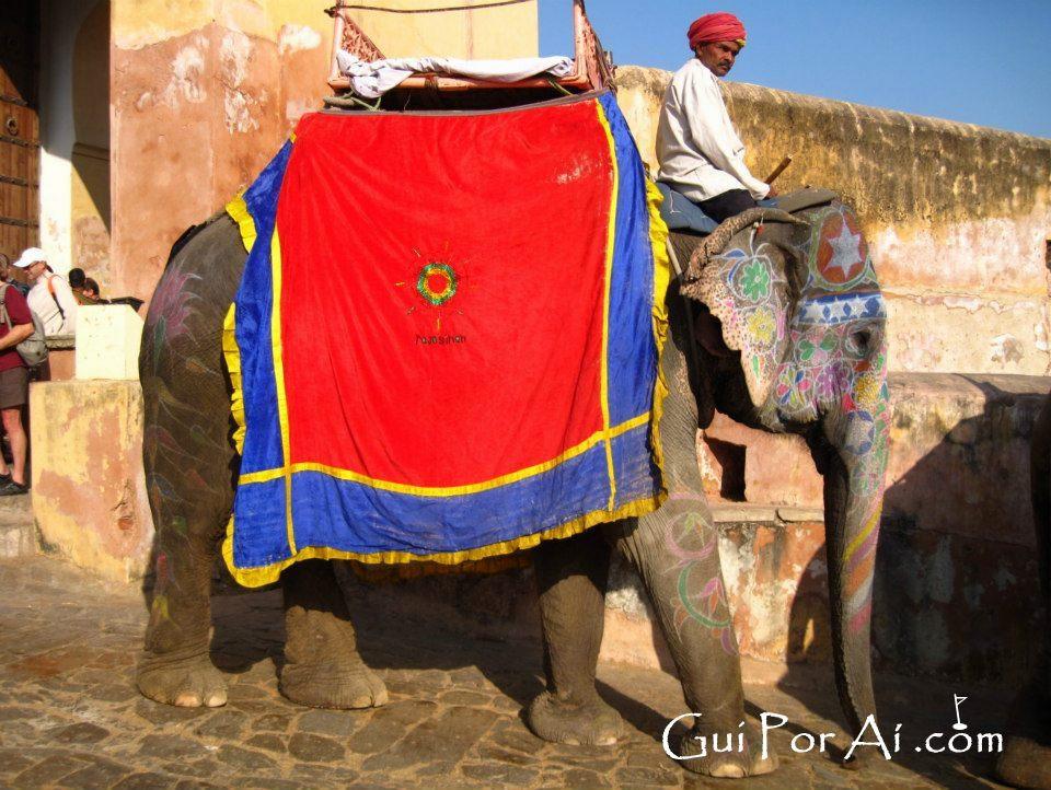 Elefantes no Amber Fort - Jaipur